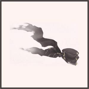 疾風の黒羽