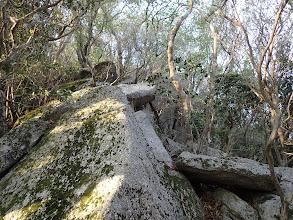 岩の上を進む