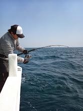 """Photo: 連チャンヒットの""""ウエノさん""""! ・・・リーダーが入ったところで魚が全力で潜ってリーダーを切っていきました。 残念!"""