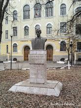 Photo: Bustul lui Teodor Murasanu - (2009.01.15)