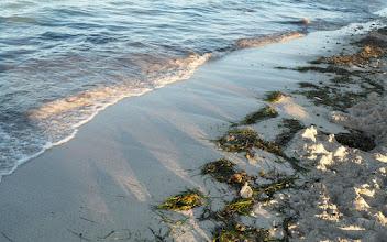 Photo: Järven rannalta vaihdoimme kuitenkin melko pian meren rannalle
