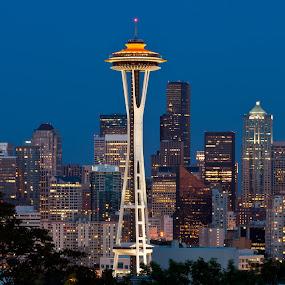 Seattle at dusk. by Muzo Gul - City,  Street & Park  Vistas