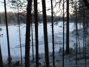 Photo: Hossa 29.11.2011. Leimikko rajautuu Pienen Syväjärven rantaan. Kuva: Lea Vainio.