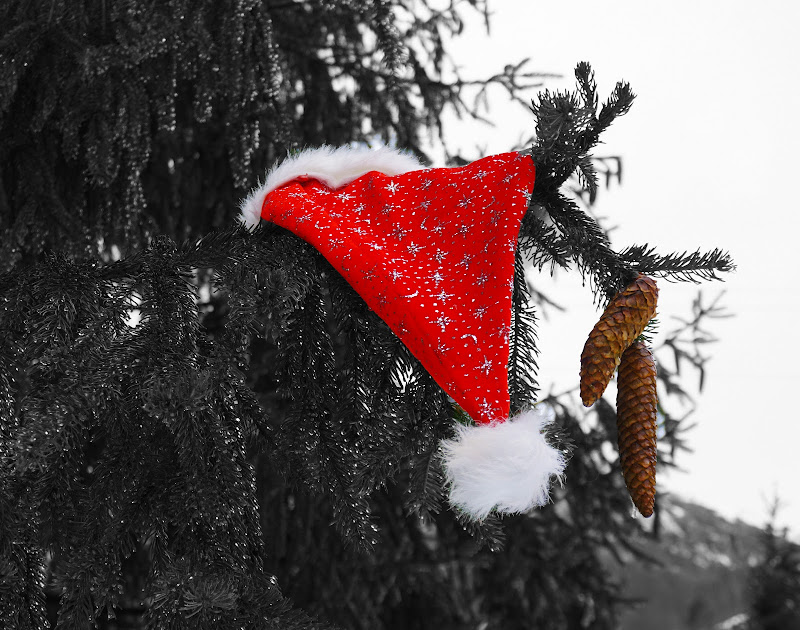 Merry Christmas di photomara_18