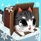 Kitty in the Box
