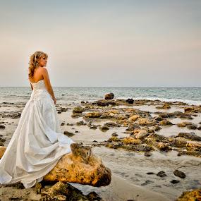 Sofia Camplioni (SC1090) by Sofia Camplioni - Wedding Bride