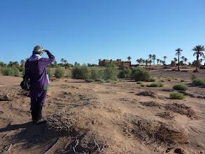 """Photo: Een eerste blik na 1 1/2 jaar op de kasbah van Sidi Khalil en het """"Essence bosje"""""""