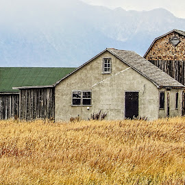 Little House on the Grassland by Richard Michael Lingo - Buildings & Architecture Homes ( barn, buildings, homes, wyoming, architecture )