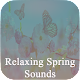 Download Relaxing Spring Sounds For PC Windows and Mac