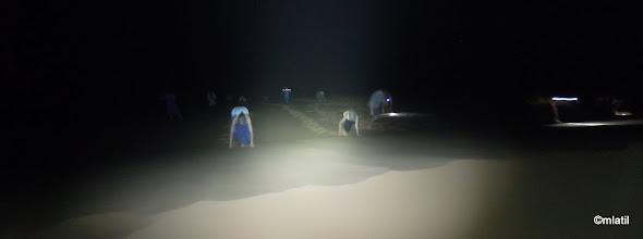 Photo: noční výstup na vrchol duny