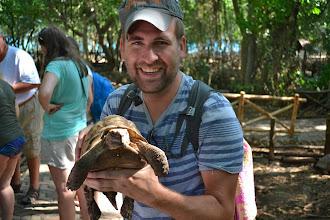 Photo: (baby / 10 yr old) giant tortoise
