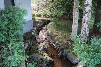 Photo: Ruisseau d'Arbrefontaine. Appelé du temps des gallo-romains : Alba Fontana (Blanche Fontaine)