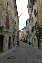Photo: Ale po ulicach luzem się nie poniewieraja