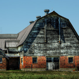 by Karen McKenzie McAdoo - Buildings & Architecture Other Exteriors