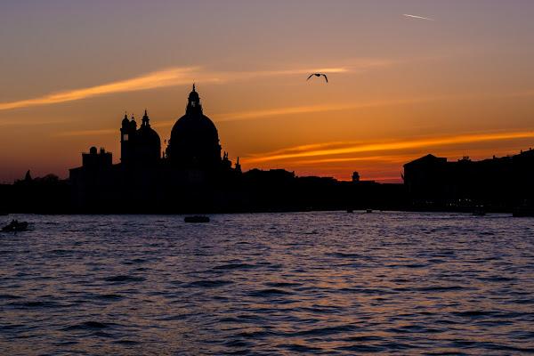 Venezia di francocattazzo