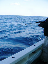 Photo: Nさん、FISH!