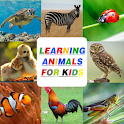 Animals.. Learning For Kids icon