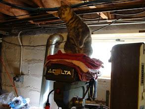 Photo: Franklin, junior inspector and drill press supervisor!