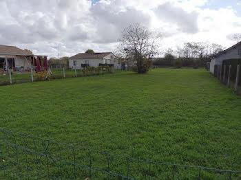 terrain à Camps-sur-l'Isle (33)