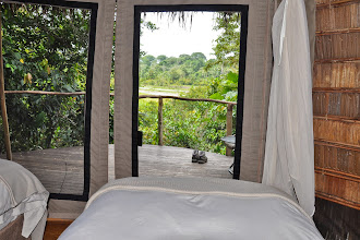 Photo: The view from Emma's room at Lango Camp - http://www.go2africa.com/accommodation/10014/at-a-glance/lango-camp?utm_source=GooglePlus&utm_medium=Social&utm_campaign=Congo