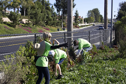 Ocean Knoll Elementary #1-Garden and Campus Clean Up