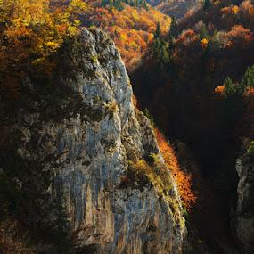 Solomon's Stones by Ioan-Dan Petringel - Landscapes Mountains & Hills ( carpathian mountains, romania, brasov )