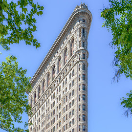 flat iron building nyc by Peter Schoeman - Buildings & Architecture Public & Historical ( usa, broadway, american, office, building, america, high, view, cityscape, avenue, landmark, tower, sky, new, town, old, downtown, skyscraper, history, midtown, flatiron, background, district, city, united, exterior, tourism, ny, skyline, states, modern, flat, street, design, park, architecture, famous, historic, business, built, manhattan, structure, attraction, urban, york, fifth, iron, nyc, travel, apartment )
