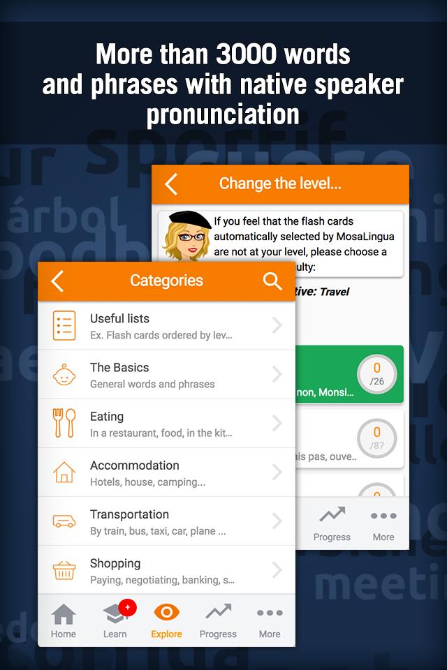 Learn French with MosaLingua Screenshot 3