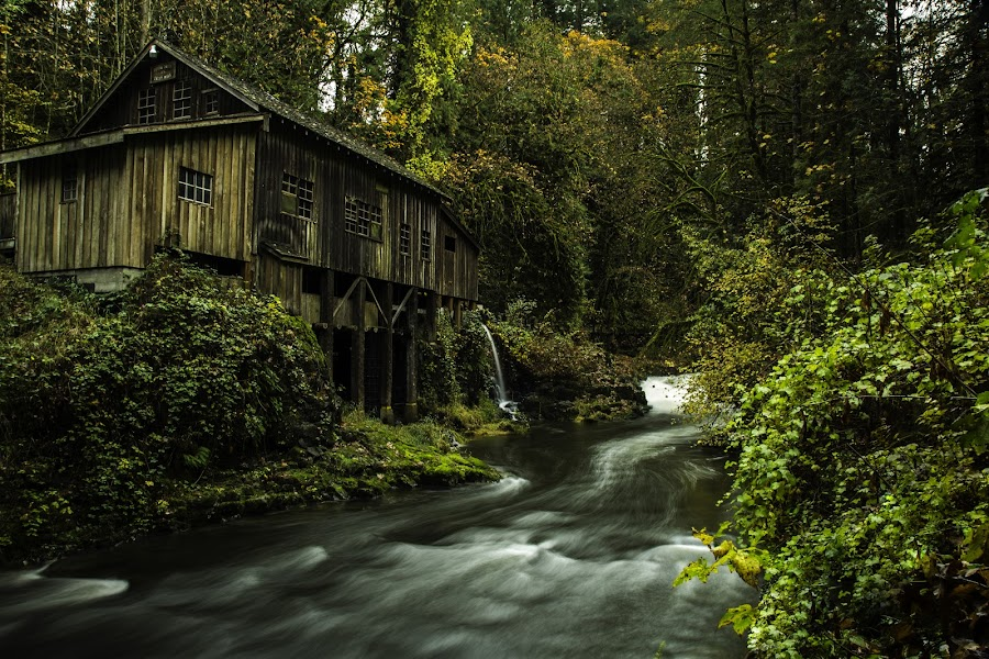 The Grist Mill by Jesse Brown - Buildings & Architecture Other Exteriors ( #allmyown, #gristmill, #landmark, #washington, #photography, #fall, #canon )