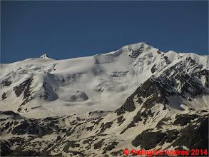 Photo: IMG_8834 nord del San Matteo, salendo al Pizzini