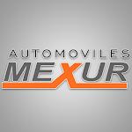 Automóviles Mexur Icon
