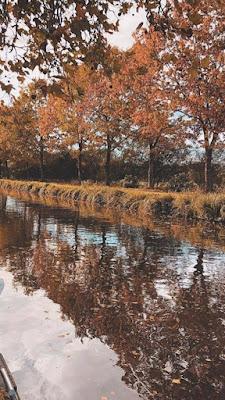 Riflessi d'autunno. di adriano_prandi