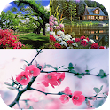 My Nature Wallpapers icon