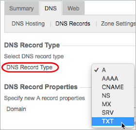 A red circle highlights the DNS Record Type. TXT is selected from the list.