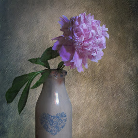 COUNTRY BOUQUET by Sharon Pierson - Artistic Objects Still Life ( milk bottle peony pink country,  )