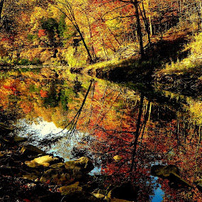 Fall Reflections 2013 by David Hughes - Landscapes Waterscapes