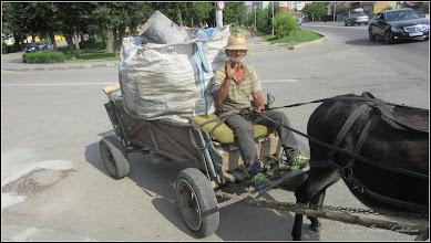 Photo: Măgărușul lui Ianoș - de pe  Calea Victoriei - 2016.08.08