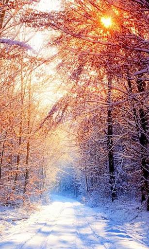 冬の壁紙とテーマ