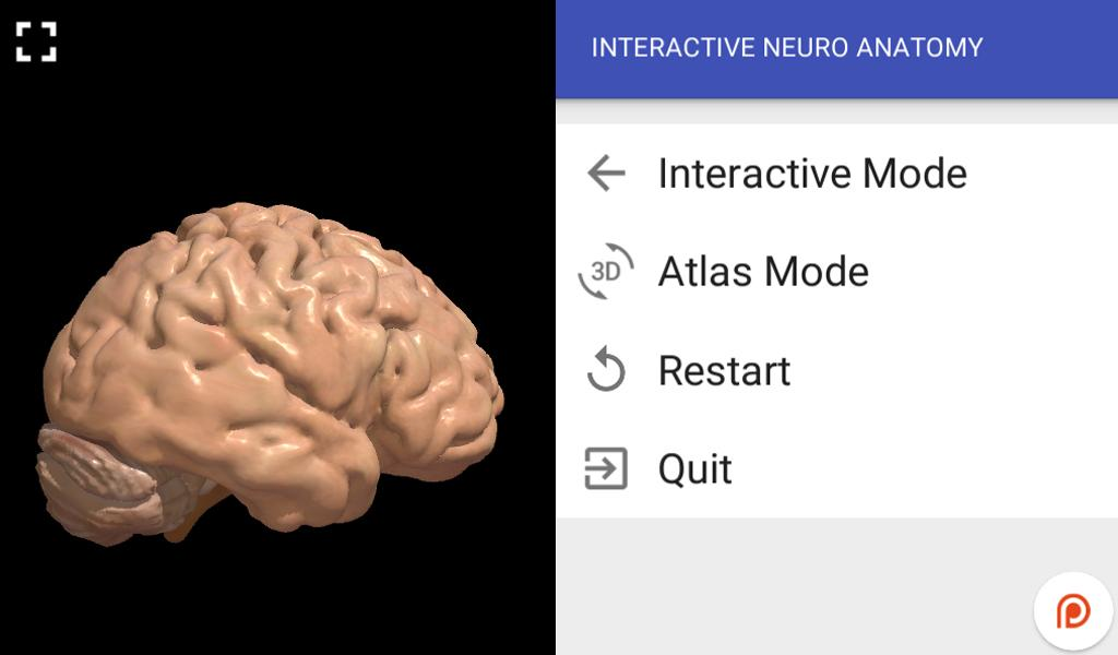 Interactive Neuro Anatomy 3D- screenshot