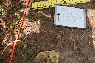 Photo: Scales, north arrow and log - part of the documentation process.  Just like field archaeology.