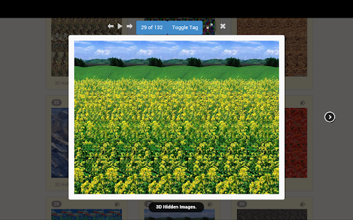 App 3d image hidden apk for kindle fire download android for Homestyler old version