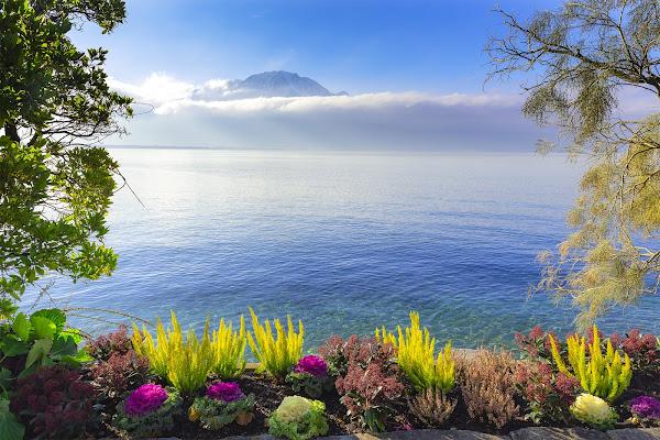 Lake Geneva shoreline di Eduard