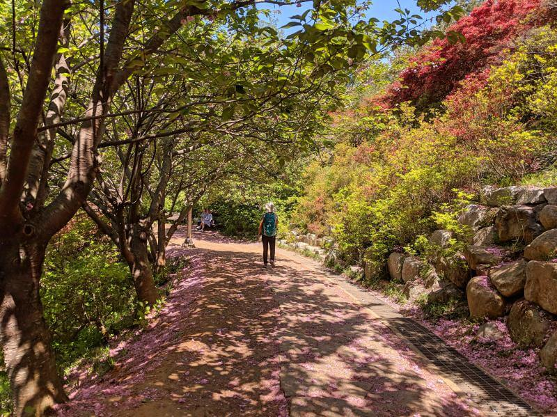 Wansan Park in Jeonju, South Korea