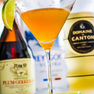Gingered Samurai Martini