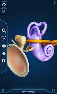 My Ear Anatomy - náhled