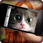 What cat are you? Game & Photo Scanner Icon