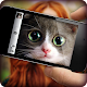 What cat are you? Game & Photo Scanner (game)