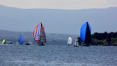 Photo: Year 2 Day 230 - Sailing Boats at Belmont #3