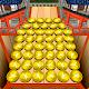 Coin Dozer: World Tour (game)