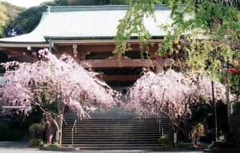 Photo: 乗誓寺